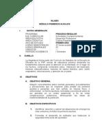 SILABO PRIMEAUX.doc