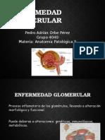 Enfermedades Del Glomerulo