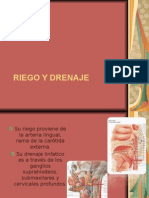Riego, Drenaje e Inervacion de La Faringe.