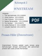 2 Downstream Process