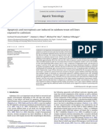 Apoptosis and Necroptosis Are Induced in Rainbow Trout Cell Lines Exposed to Cadmium