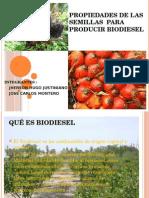 Propiedades de Las Semillas Para Producir Biodiesel