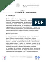 2 m 1 Organizacion-dfdcd- 2013