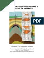 GHID DE ANALIZA SI INTERPRETARE A DIAGRAFIILOR GEOFIZICE.pdf
