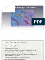 8 Primary Production(2)