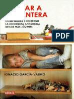 Educar a La Pantera - Garcia-Valino, Ignacio