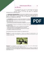 Relaciones interespecíficas e Intraespecíficas.doc