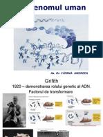 C-02 MG-Ro Genomul Uman CA