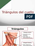 Cuello triangulos