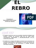 Cerebro Carmona T Raquel Diez Velazquez D