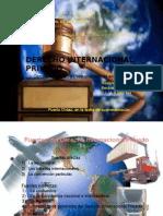 Diapositivas Presentacion Trabajo Dipriv. 2º Año Ugma Copia