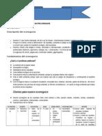 Proyecto de Econegocios 2011