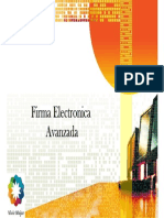 Firma Electronica Avanzada