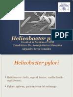 Helicobacter pyloriropbox:Medicina:Microbiología:Helicobacter pylori.pptxri