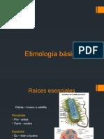 Etimologia basica2