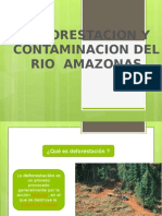 deforestacion.pptx