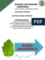 ÁCIDO JASMÓNICO