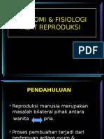 1. Anatomi & Fisiologi Alat Reproduksi.