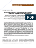 antimicrobial-activity-of-five-plants-from-northern-mexico-on-medically-important-bacteria.pdf