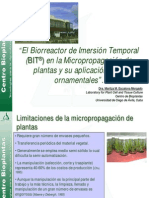 El Biorreactor de Inmersion Temporal en La Micropropagacion Ornamentales