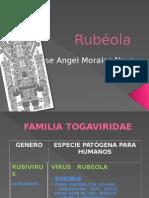 Reo Virus