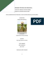 Costos de Producción en Cultivo de Arroz
