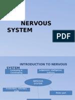 nervous system ppt.pptx