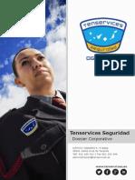 Tenservices Seguridad Dossier