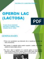 Presentacion Operon Lac
