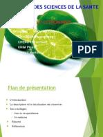 Le Citronnier (Diapo)