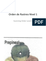 Orden de Rastreo Nivel 1 Foto Por Pagina