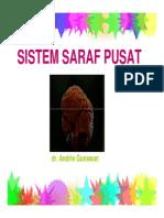 Fisiologi Sistem Saraf Pusat