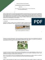 """EJEMPLO DE PROTOCOLO DE TITULACIÓN """"AUTOMATIZACIÓN DEL PROCESO DE GALVANIZADO"""""""