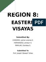 Region 8 Philippines Final Written Report