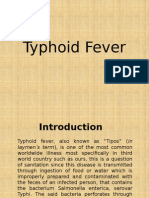 Typhoid Fever Para Present