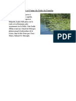 Articol Flora Si Fauna Deltei Dunarii
