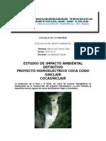 PROYECTO EVALUACION DELIMPACTO AMBIENTAL.docx