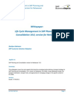 Life Cycle Management in SAP Planning and Consolidation 10.0 Version for Netweaver