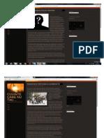 Portofoliu la Jurnalismul On-Line