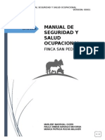 Manual de Seguridad y Salud Ocupacional