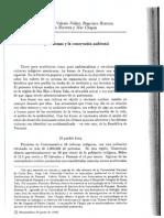 Los Indígenas Kuna y La Conservación Ambiental. Guatemala