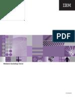 WebSphere Quality Stage Tutorial