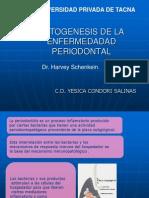 Patogenesis de La Enfermedadad Periodontal