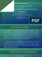 Principios de Protección Radiológica Para Personal Ocupacionalmente Expuesto