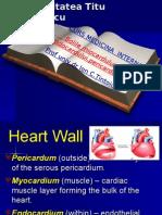 Curs Cardiomiopatii de Prezentat 15 Dec -2015