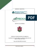 EIA gaseoducto 3 EIA.pdf