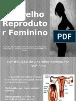 Aparelho Reprodutor Feminino (FINAL)