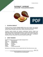 alpukat.pdf
