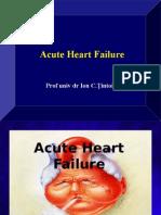 Sinaia 2 Oct 2014 -Final-Acute Heart Failure