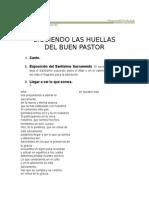 Siguiendo Las Huellas de Jesus Buen Pastor